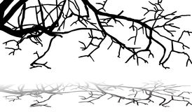 Branches pattern Royalty Free Stock Images