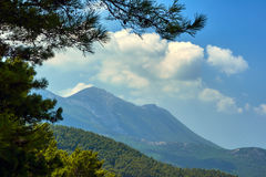 Branches of pine and mountain landscape Royalty Free Stock Image