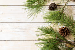 Branches of pinetree on wooden background Royalty Free Stock Image