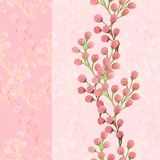 Branches of pink Mimosa royalty free illustration