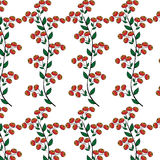 Branches red berries natural seamless background Stock Photo