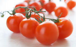 Branches of red tomatoes Royalty Free Stock Images