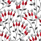 Branches rosehip berries, seamless  pattern. Royalty Free Stock Image