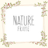 Branches of roses,  frame. Flowers with border. cute border wreath. green leaf floral elements frame. natural border in gentle colors Royalty Free Stock Photography