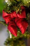Branches rouges d'arc et de sapin rue 2008 de la Roumanie de décoration de décembre de Noël de caransebes Photo stock