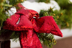 Branches rouges d'arc et de sapin rue 2008 de la Roumanie de décoration de décembre de Noël de caransebes Photographie stock libre de droits