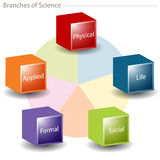 Branches of Science. A 3d chart representing the branches of science Royalty Free Stock Photography