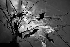 Branches shrouded in cobwebs and bats Stock Photos