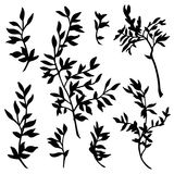 Branches silhouette vector set Stock Images