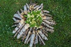 Branches sur le pille avec des fleurs Images libres de droits