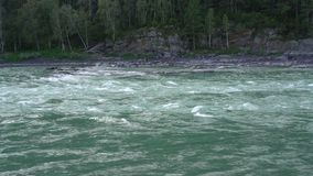 Branches of a tree are heard against the backdrop of a fast mountain river. Branches of a tree are heard against the backdrop of a fast  turquoise mountain river stock video footage