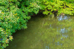 Branches of trees framing a river Stock Photo