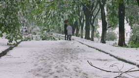 The branches of the trees with green spring leafs broke under the weight of wet snow and wind. Natural anomaly.  stock video footage