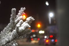 Branches of trees in the hoarfrost against the background of night lights with a bokeh effect royalty free stock photos