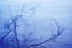 The branches of trees are reflected in the azure water surface royalty free stock image