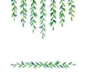 Branches vertes Photo libre de droits