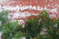 Branches were eaten on a snow-covered reddish background. Green prickly branches were eaten on a snow-covered red-brown wooden background Royalty Free Stock Image