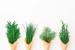 Branches of winter tree in waffle cones on white background. Eco concept. Flat lay, top view Stock Photos