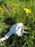 Branchez la pose dans l'herbe, concept écologique d'énergie image stock