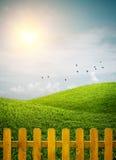 Branchie recintate dell'erba Fotografia Stock