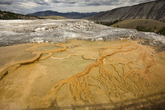 Branching pattern in orange geothermal pool, Mammoth Hot Springs Stock Photography