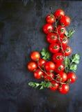 2 branchs томатов вишни Стоковое Фото
