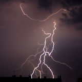 Branchy lightning Royalty Free Stock Photo