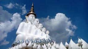 5 branco buddha Fotografia de Stock