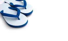 Branco com falhanços de aleta azuis no branco Fotografia de Stock Royalty Free