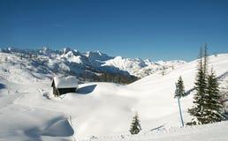 Branco da neve Foto de Stock