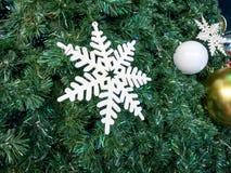 Branco da neve na árvore de Natal Imagens de Stock Royalty Free