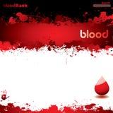Branco do Web do sangue Fotografia de Stock