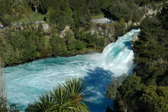 Branco e cachoeira da cerceta Fotografia de Stock Royalty Free