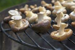 Branco e cogumelos de shiitake na grade Fotografia de Stock Royalty Free