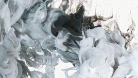 Branco e de tinta preta na água Imagem de Stock