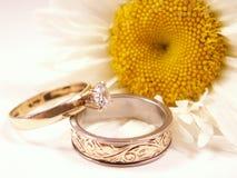 Branco e ouro Imagens de Stock
