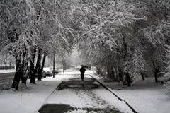 Branco e preto Imagens de Stock