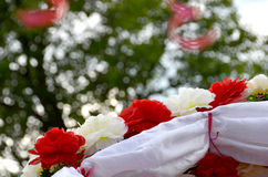 Branco e vermelho Imagens de Stock