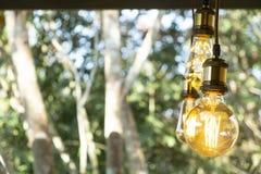 Branco morno conduzido incandescente retro clássico da lâmpada elétrica no fundo do borrão, ampola do vintage foto de stock