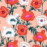 Branco na moda e plano botânico de florescência do teste padrão floral da laranja ilustração royalty free