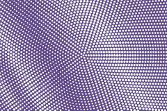 Branco roxo reticulação pontilhada Fundo de intervalo mínimo Inclinação pontilhado sujo áspero Fotos de Stock Royalty Free