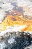 Brand befläckt jord Arkivfoton