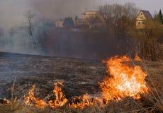 Brand - bränna av ett torrt gräs Royaltyfri Bild