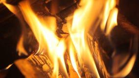 Brand in de open haard stock video