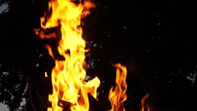 Brand des roten Feuers nachts Nahaufnahme Langsame Bewegung stock video footage