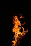 Brand die op een zwarte achtergrond wordt geïsoleerd Stock Foto's
