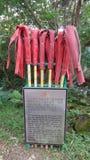 Brand-drevkarlar i skogar Royaltyfria Foton