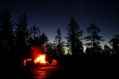 Brand in een bos Stock Afbeelding