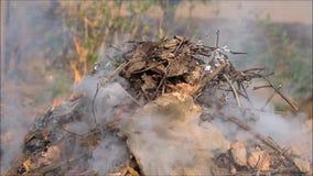 Brand en rook op tuin stock footage