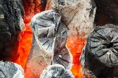 Brand från kol Arkivbild